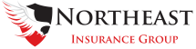 Northeast Insurance Group, LLC